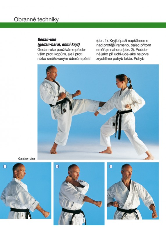 Výsledek obrázku pro karate kopp